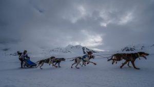 Protagonisme català en el Campionat d'Espanya de Múixing Neu celebrat al Pla de Beret